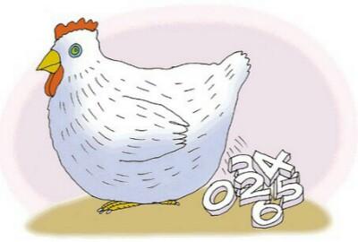 中年是一只白切鸡