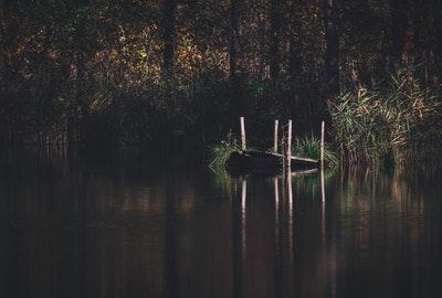 从凶险和泥泞的沼泽中